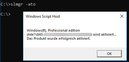 Windows CMD Aktivierung